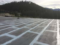 Fabric Reinforced Roof Restoration